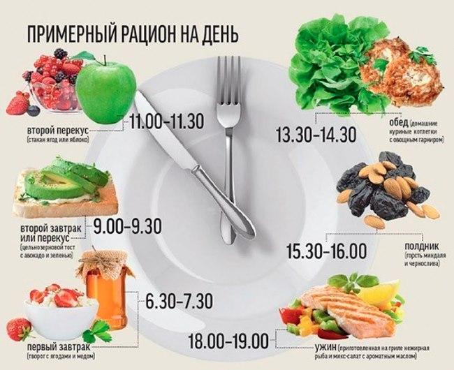 Белковая диета какие входят продукты
